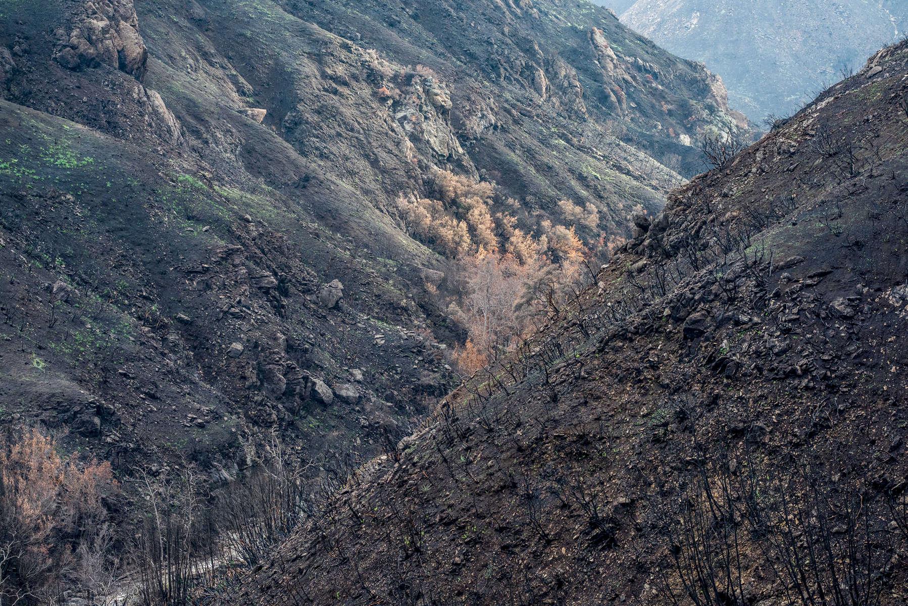 Valley of Destruction
