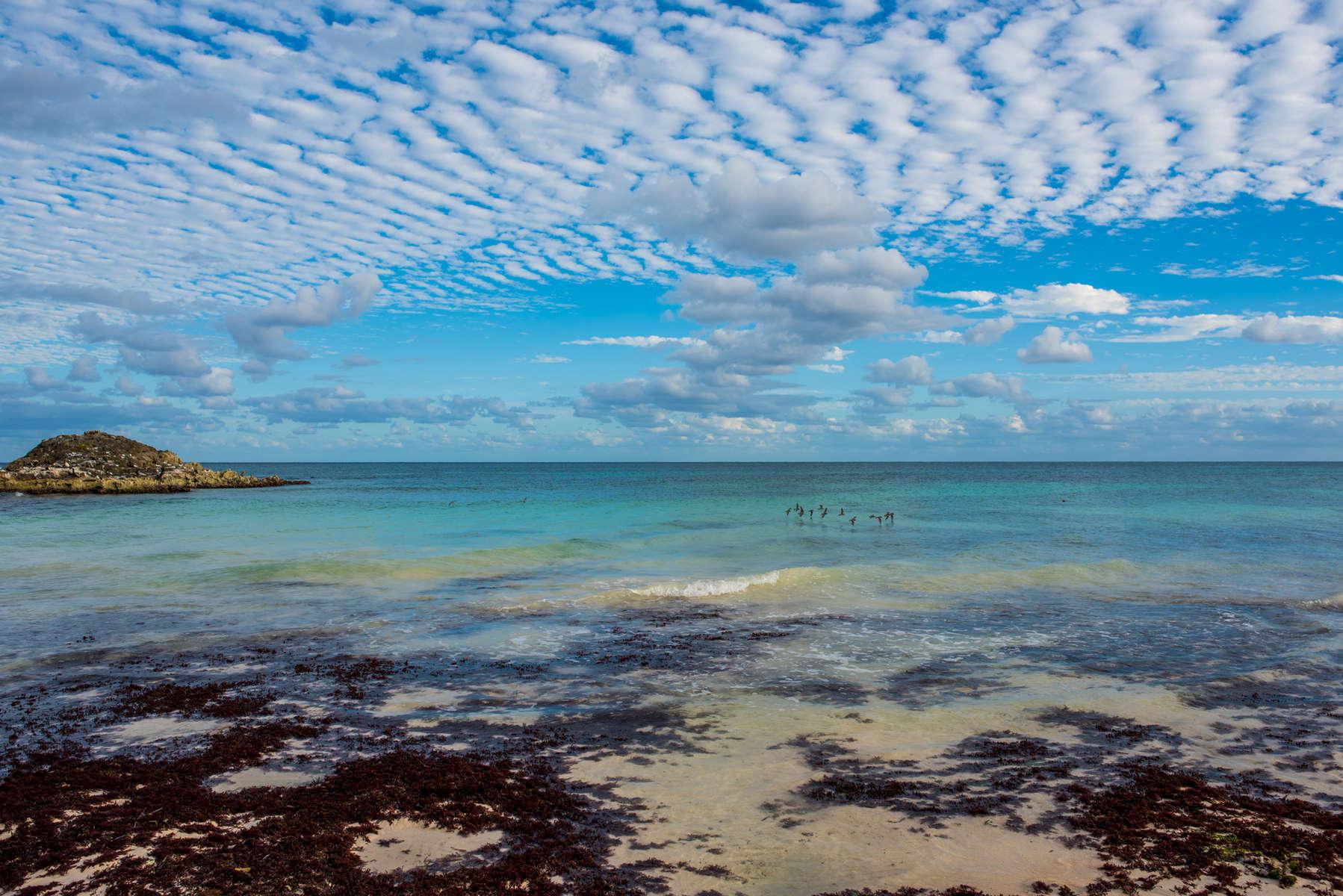Sea & Sky