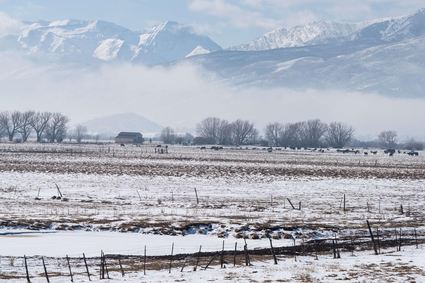 Utah Winter