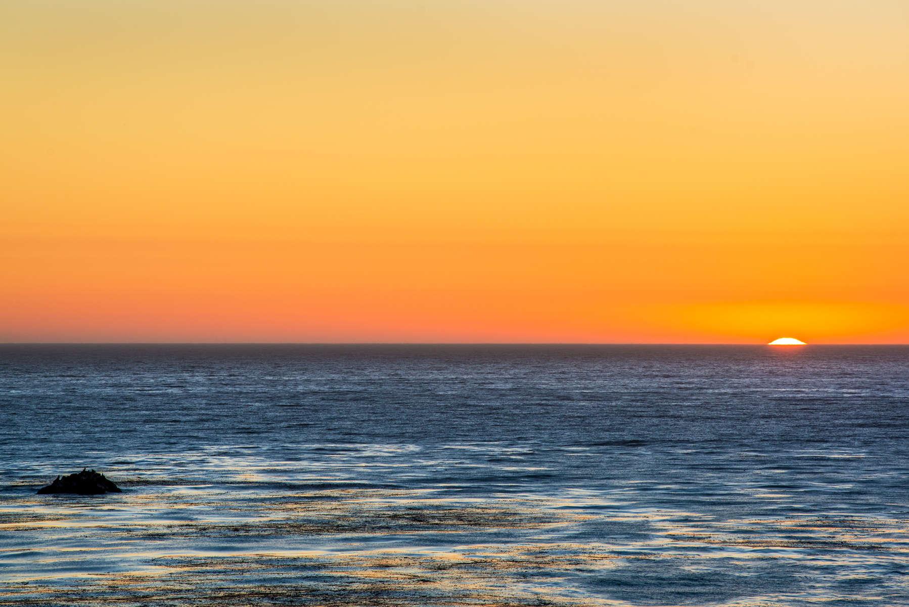 Seals & Sunset