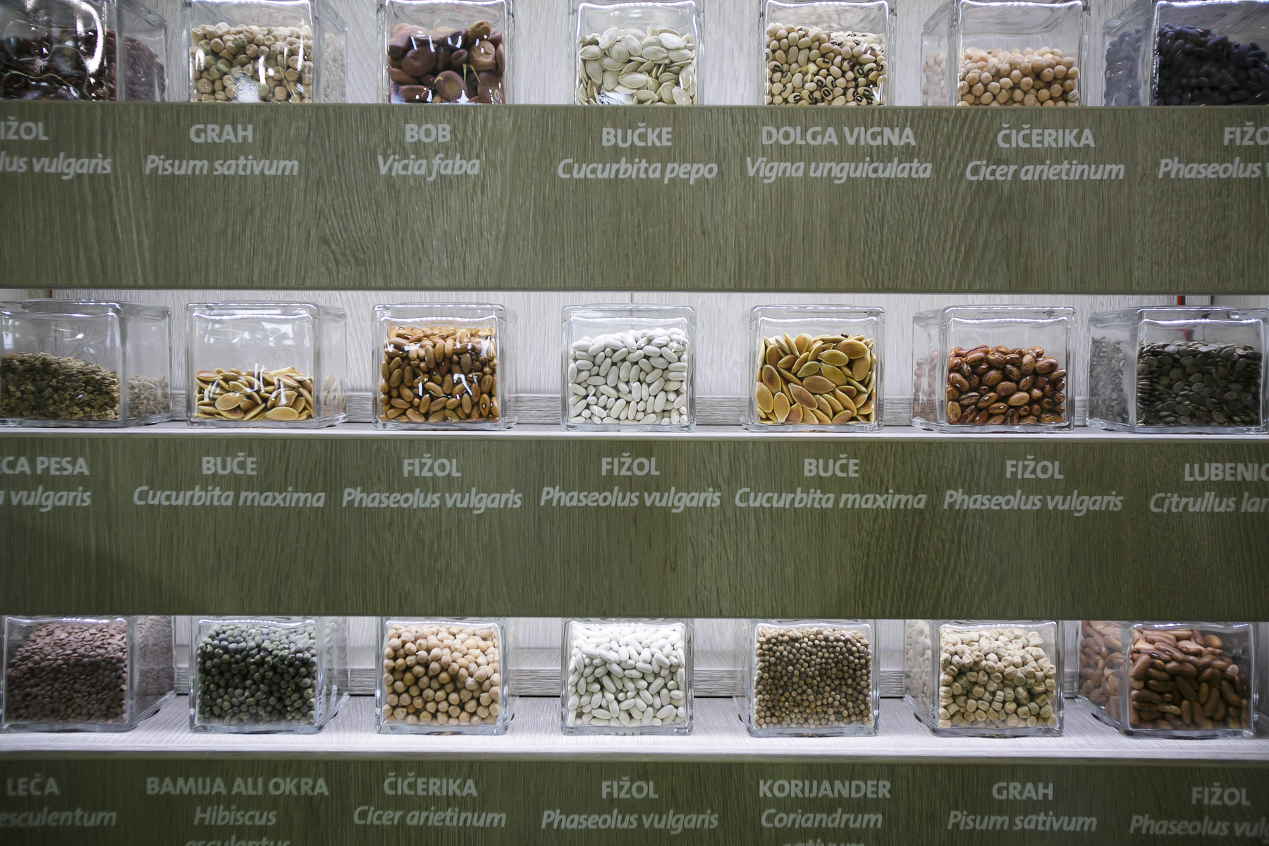 Vegetable seeds are exhibited at the 53rd agricultural fair Agra in Gornja Radgona, Slovenia, Aug. 22, 2015, following an international conference on GMOs in Europe held the day before.