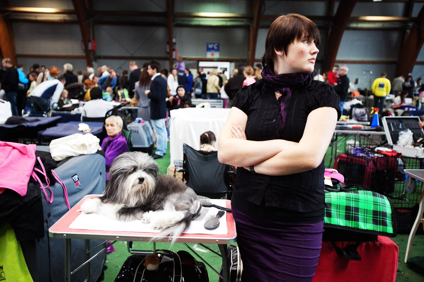 DogShows-photoLukaDakskobler-20