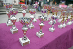 Trophies for every category are on display at the 19th Hrast Memorial, the international oldtimers\' mountain race in Ljubelj, Slovenia, Sep. 13, 2015.