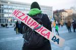 ProtestNezaupnica-fotoLukaDakskobler-016