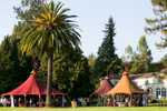 Chateau-St-Jean-Events-24-Sonoma