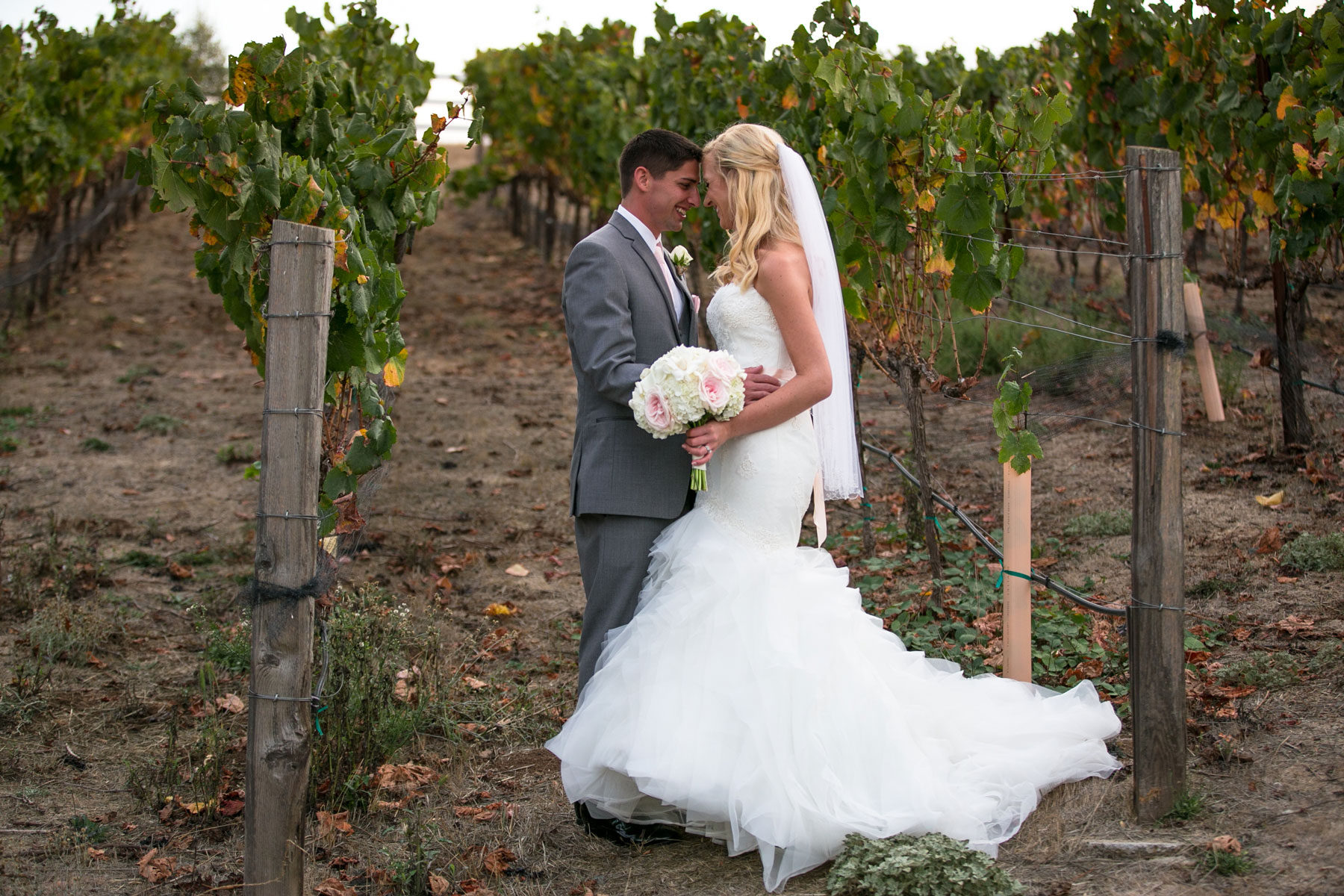 meritage-resort-napa-weddings-photographer-28