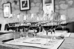 napa-event-photographer-wine-winery-1