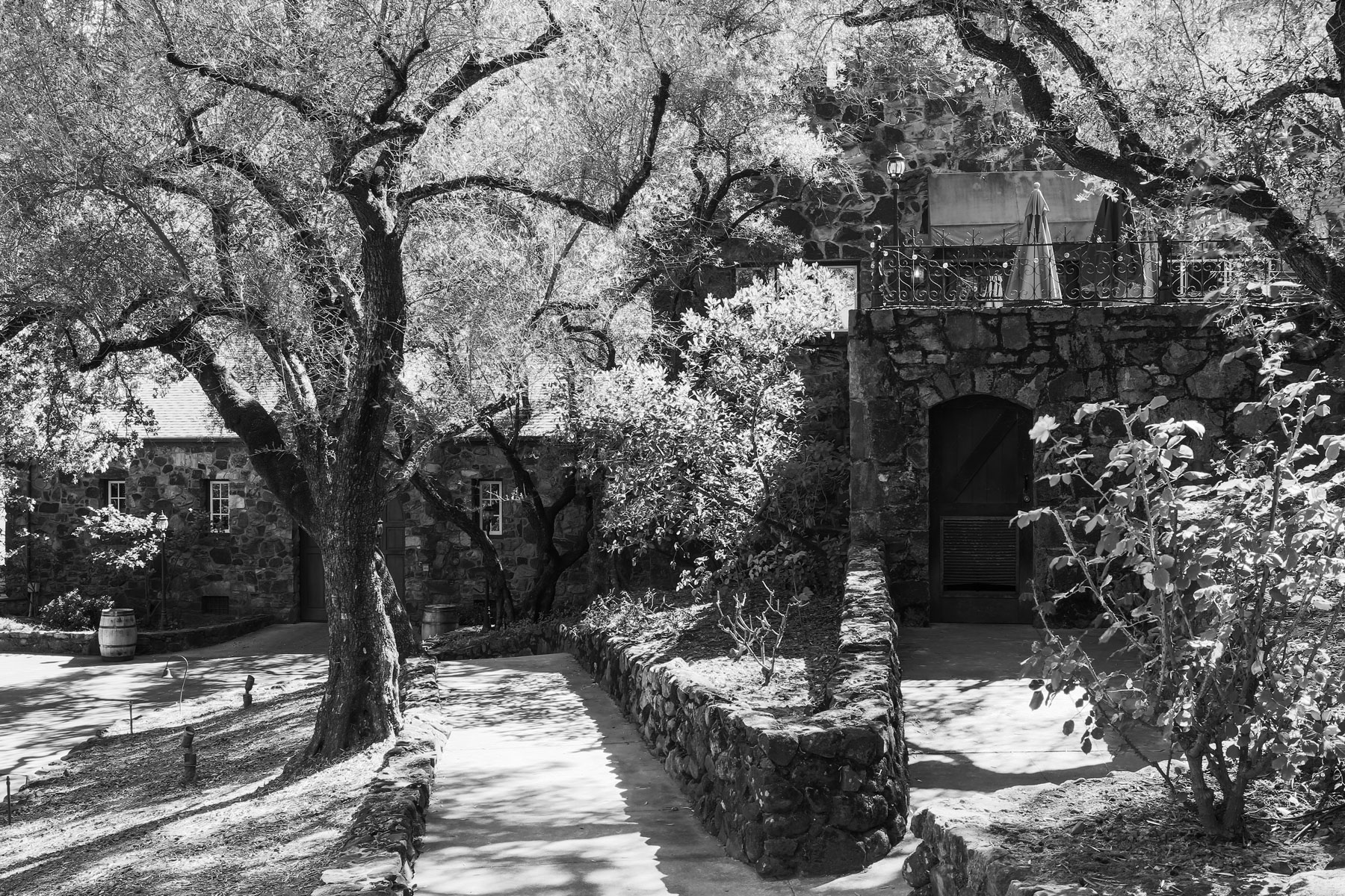 st-clement-vineyards-10-napa