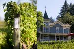 st-clement-vineyards-12-napa
