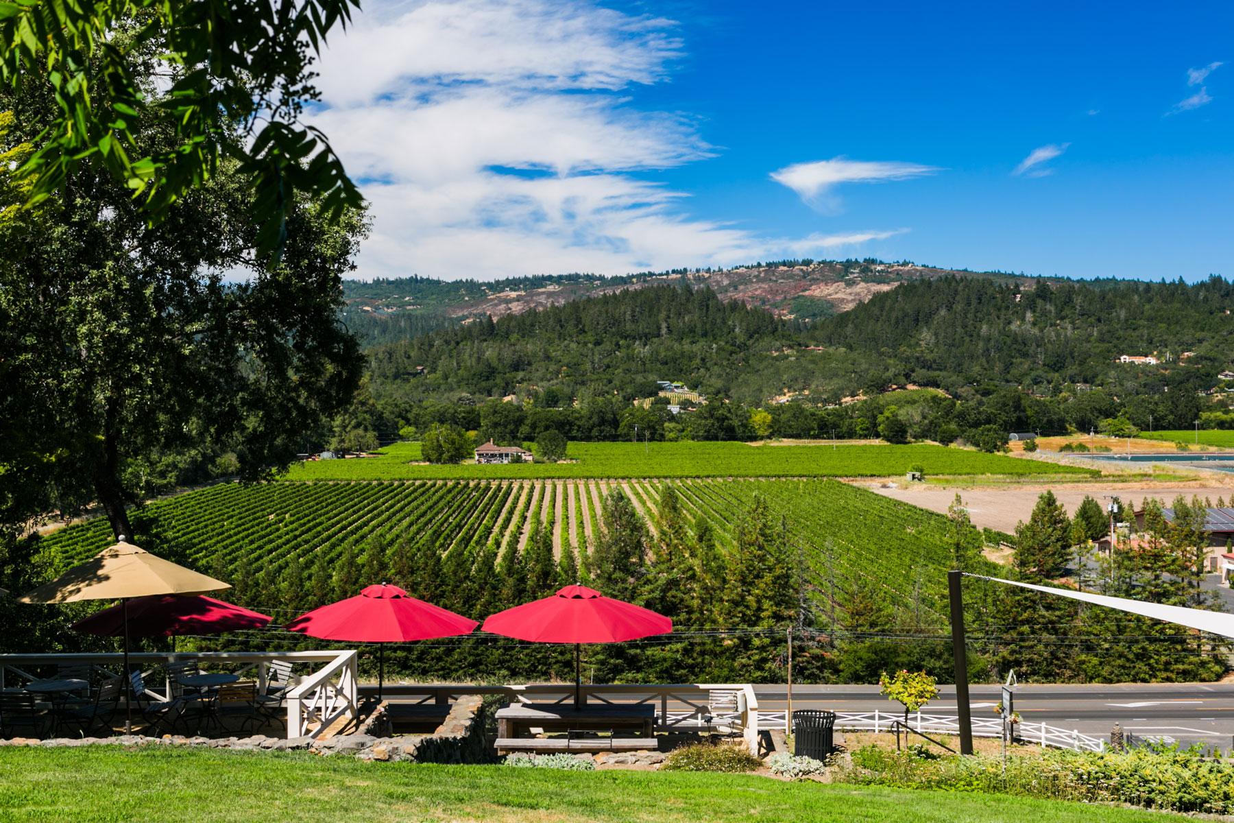 st-clement-vineyards-7-napa