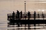Fisherman-at-Havana-Harbor