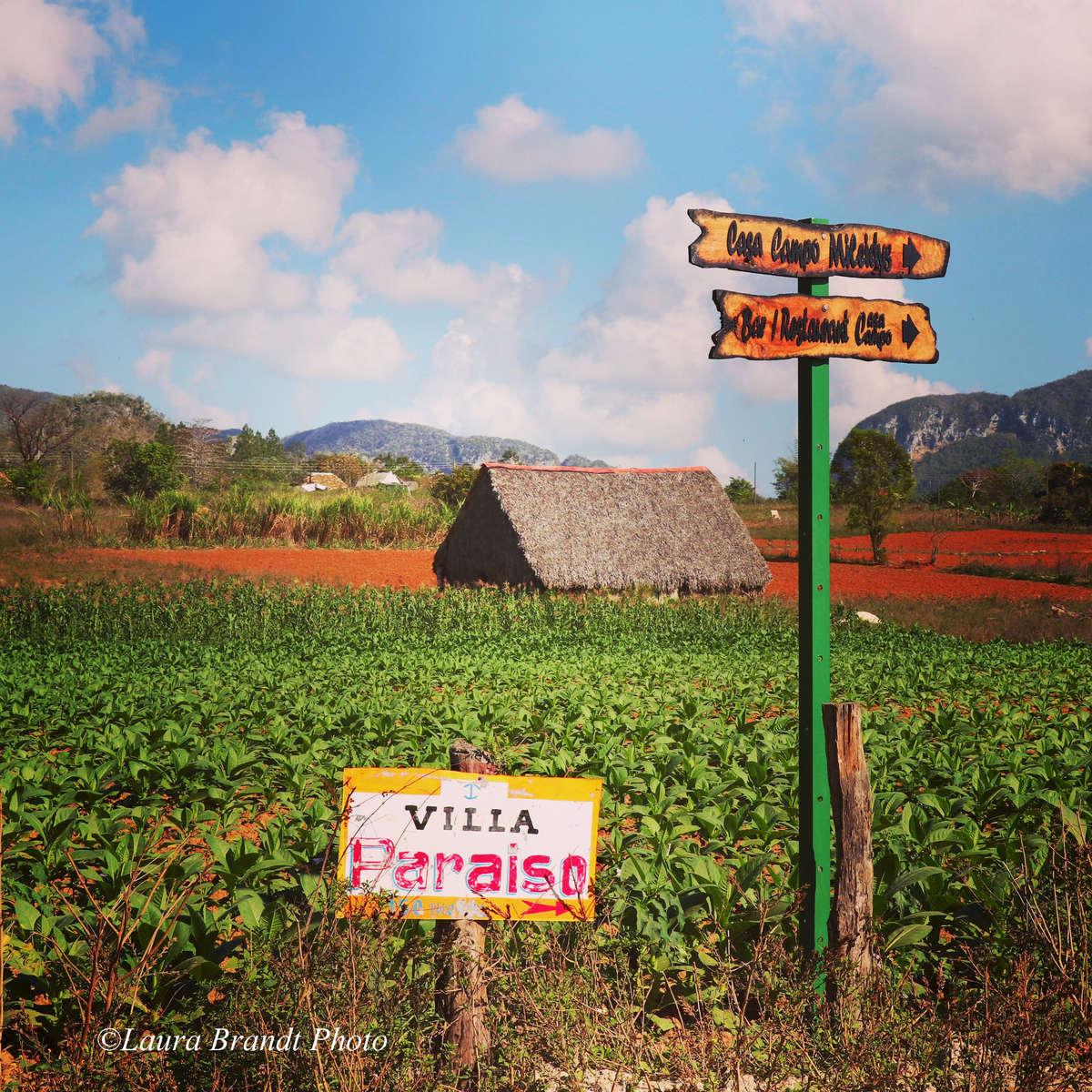 VillaParaiso_Vinales_Cuba_LauraBrandtPhoto
