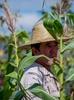organic-farm-worker