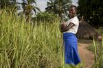 Soeur Angélique Namaika lauréate du Prix Nansel du Haut commissariat de L\'ONU pour les réfugiés(lUNHCR) pour son action auprès des femmes du nord de la RDC et plus particulièrement les femmes et les enfants victimes des exactions de la LRA du tristement célèbre Joseph Kony.Marie, 19ans, sur le chemin de son école, kidnappée à 14 ans, pendant deux ans (entre 2008 et 2010) par la LRA. Elle a été forcée comme tous les autres enfants otages à participer aux bastonnades  à mort des otages qui avaient tenté de s\'enfuir.