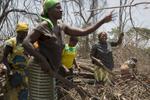 Soeur Angélique Namaika lauréate du Prix Nansel du Haut commissariat de L\'ONU pour les réfugiés(lUNHCR) pour son action auprès des femmes du nord de la RDC et plus particulièrement les femmes et les enfants victimes des exactions de la LRA du tristement célèbre Joseph Kony.Samedi 15 mars 11h du matin Soeur Angélique et des femmes bénificiaires de son association vont travailler au défrichage du champs que lma soeur a pu acheter grace à une partie de la dotation du prix. (la dotation du prix est de 75 000 euros). Le champ est d\'une superficie de 20 hectares. Elles y planterons du mais du manioc des bananiers et des haricots entre autres.Le site est situé à 30km de piste de la ville de DUNGU.