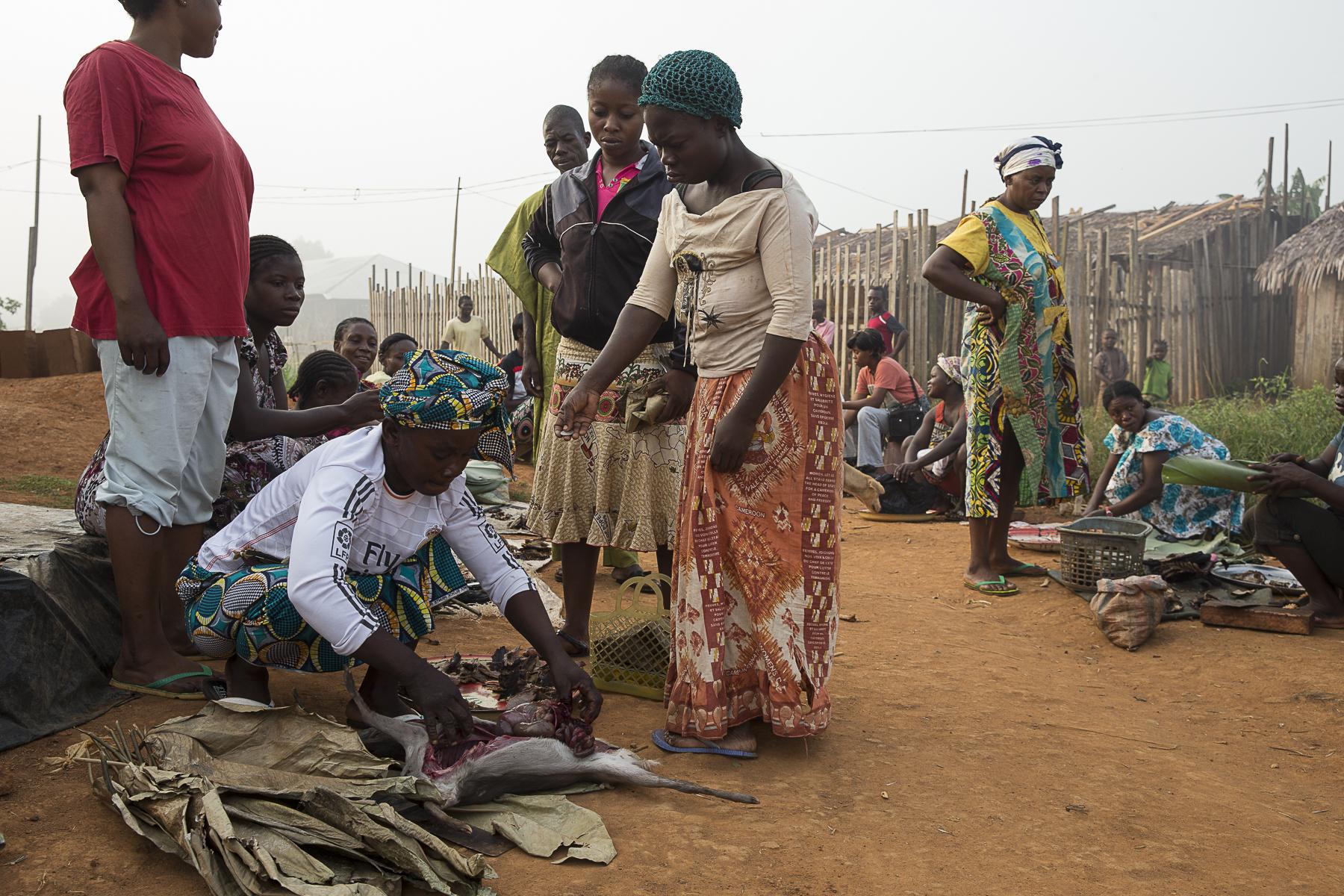 Marchè de viande de brousse tôt le matin dans les faubours de la ville acierie de Liboungo, à 100km du pointzéro.C\'est pour toute une population la seul source de protéines à l\'aquelle ils aient accés.