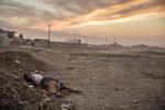 Dimanche 6 Novembre, le 1er Bataillon de l'ISOF 1 du Lieutenant Colonel Mohanet s'enfonce encore un peu plus dans Mossul, il quitte les faubours agricoles pour un district plus urbain. L'avancée est ralantie par le manque de soutien aérien de la coalition et du fait que les unitées sensées protéger leurs flancs ne sont pas encore opérationnelles. Les soldats pendants les longs arrêts s'occupent comme ils peuvent, fouilles les maisons... Un djihadiste caché parmis les réfugiés a été abattu par les forces spéciales. Les civiles continuent en nombres à quitter les zonnes de combats, ils sont rassemblés derrière la ligne de front puis transférés vers les camps installés plus à l'arrière dans la région d'Erbil.