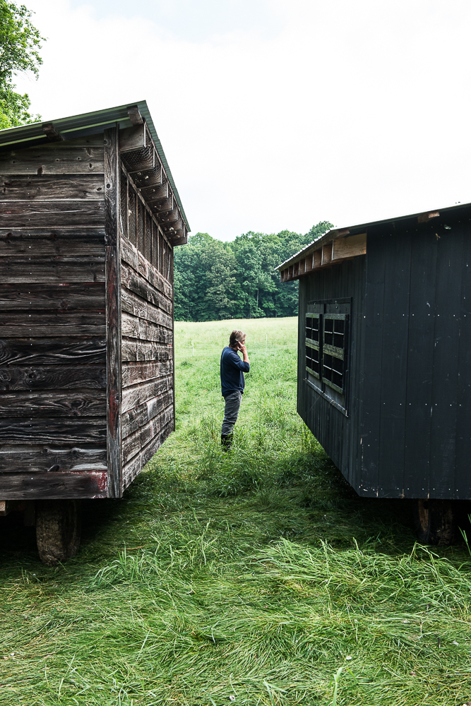 farmer standing in the grass between two chicken coops