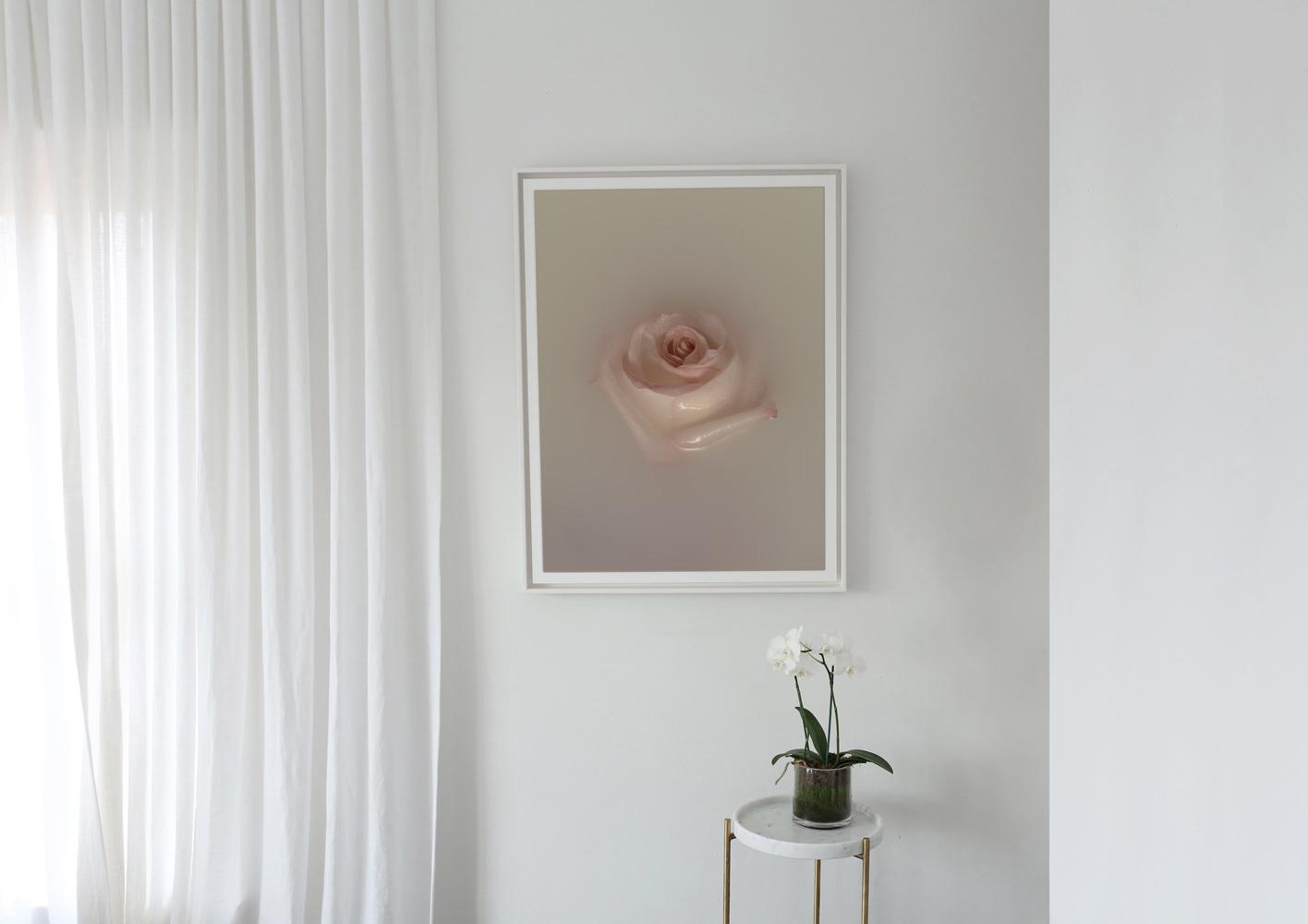 BATH-PRINT-ROSE