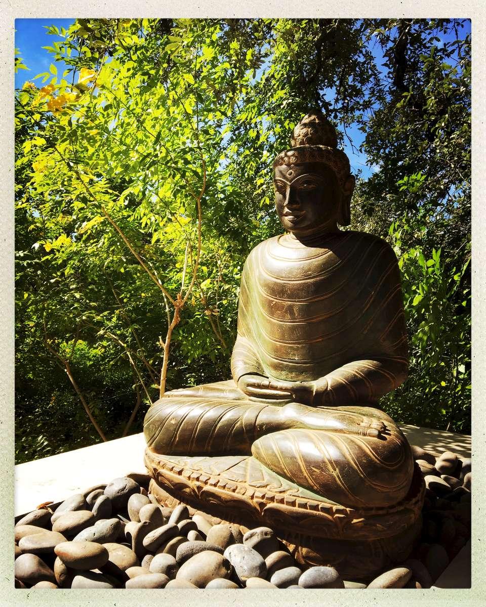 DELK---Pool-Buddha