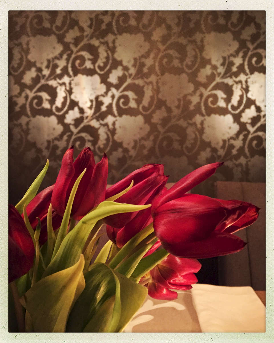 A relaxing evening with fresh tulips reflecting the mood of the dining room walls.