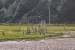 AK-Landscape-AC-JPBx