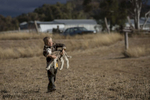 COONABARABRAN , NEW SOUTH WALES - JUNE 17:  Harry Taylor,6, picks up a Lamb to try and feed it with cotton seed. The families farm is almost devoid of grass, with dust and weeds the only constant across the property. In the Central Western region of New South Wales, Australia, farmers continue to battle a crippling drought which many locals are calling the worst since 1902. In Warrumbungle Shire, where sharp peaks fall away to once fertile farmland the small town of Coonabarabran is running out of water. The town dam is down to just 23% capacity, forcing residents to live with level six water restrictions. The New South Wales State government recently approved an emergency drought relief package of A$600m, of which at least A$250m is allocated for low interest loans to assist eligible farm businesses to recover. The package has been welcomed, though in the words of a local farmer {quote}it barely touches the sides{quote}. Now with the real prospect of a dry El-Nino weather pattern hitting the state in Spring, the longer term outlook for rain here is dire. June 17, 2018 in Coonabarabran, Australia.  (Photo by Brook Mitchell/Getty Images)