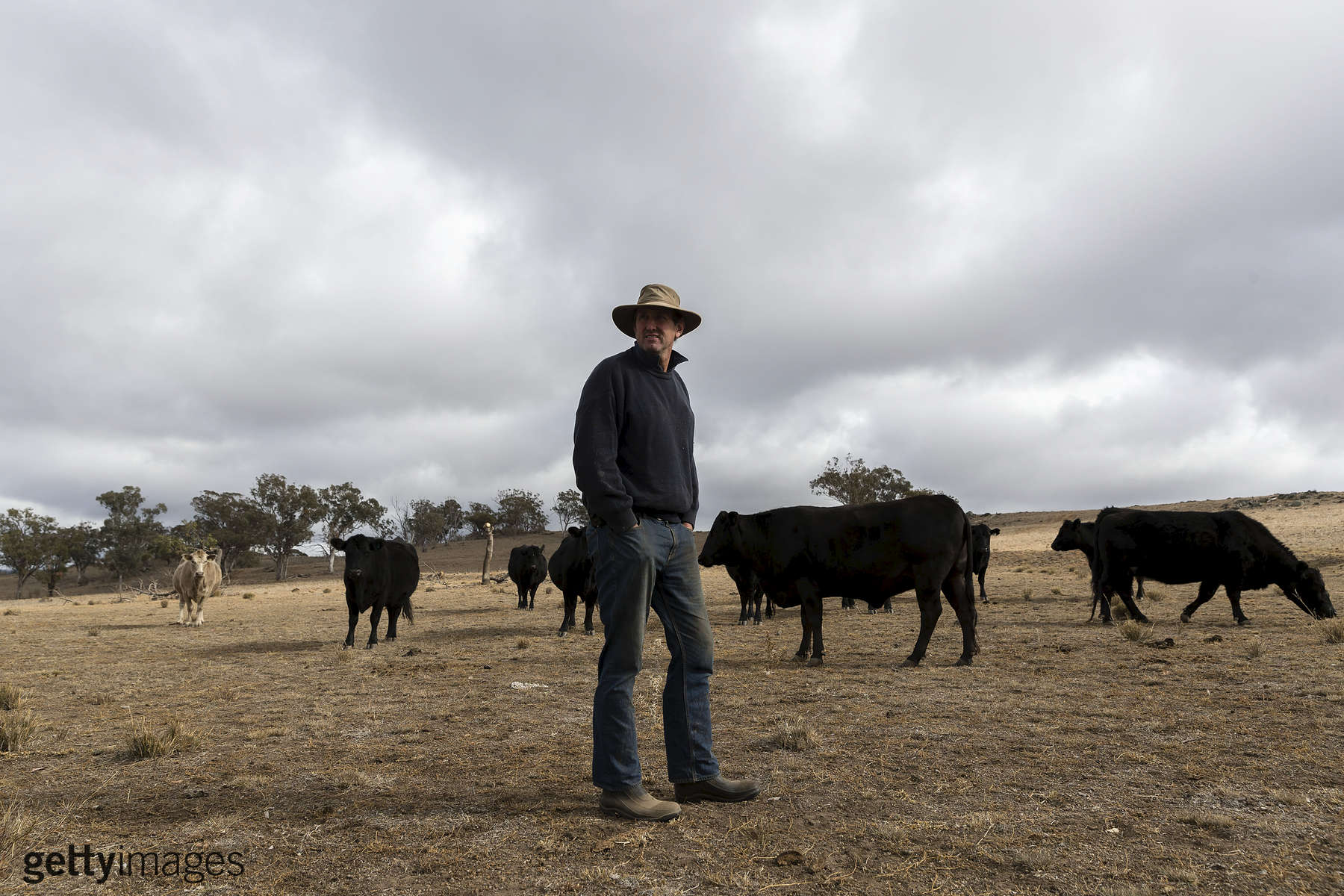 COONABARABRAN , NEW SOUTH WALES - JUNE 18:  Angus Attkinson is pictured on his farm outside Coonabarabran. In the Central Western region of New South Wales, Australia, farmers continue to battle a crippling drought which many locals are calling the worst since 1902. In Warrumbungle Shire, where sharp peaks fall away to once fertile farmland the small town of Coonabarabran is running out of water. The town dam is down to just 23% capacity, forcing residents to live with level six water restrictions. The New South Wales State government recently approved an emergency drought relief package of A$600m, of which at least A$250m is allocated for low interest loans to assist eligible farm businesses to recover. The package has been welcomed, though in the words of a local farmer {quote}it barely touches the sides{quote}. Now with the real prospect of a dry El-Nino weather pattern hitting the state in Spring, the longer term outlook for rain here is dire. June 18, 2018 in Coonabarabran, Australia.  (Photo by Brook Mitchell/Getty Images)