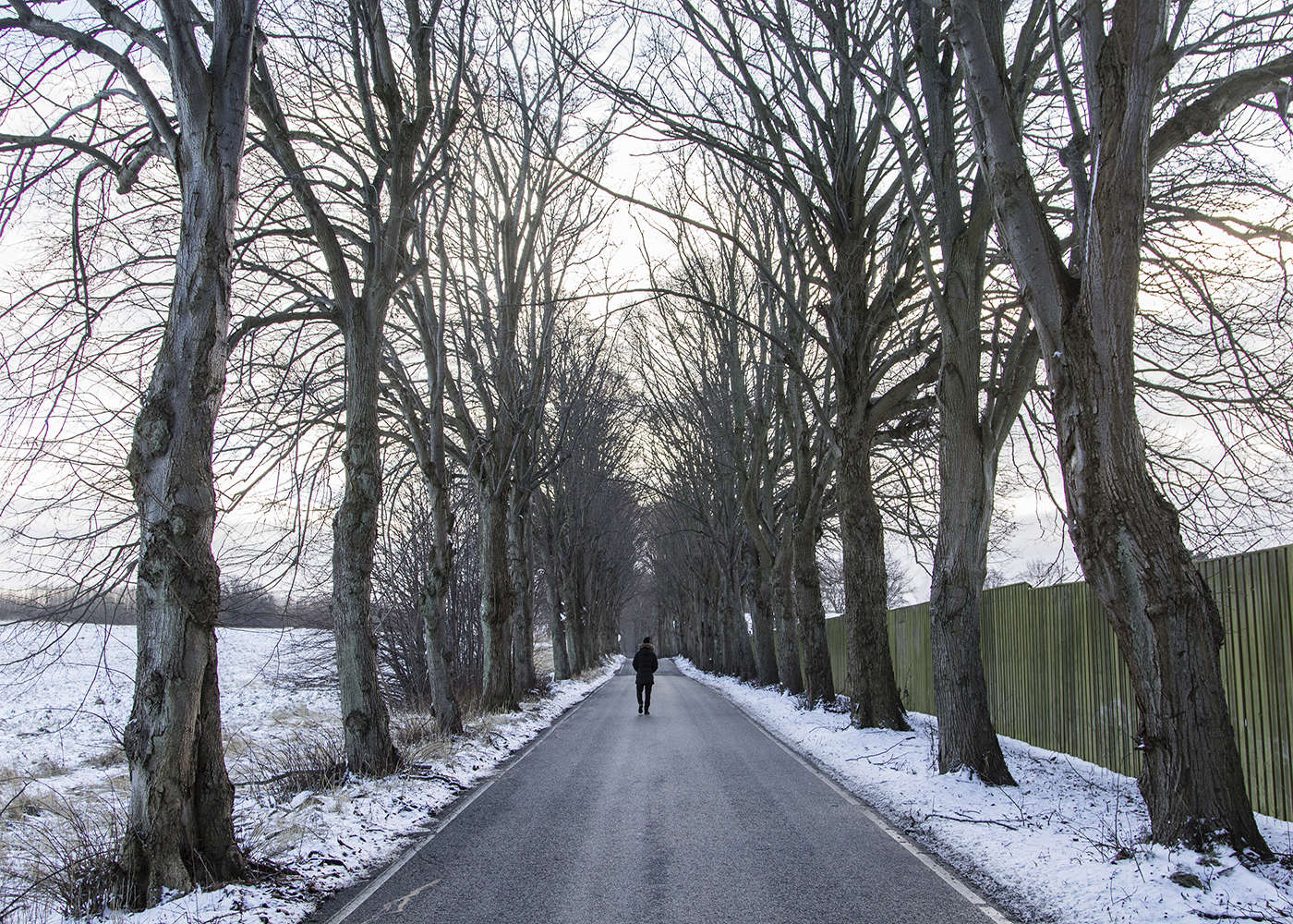 15/01/2016 -- Sandholm, Denmark -- There is a street next to the camp where Qanie always walk there when he want to think and feels sad. the street always empty you can only see the trees and the birds.