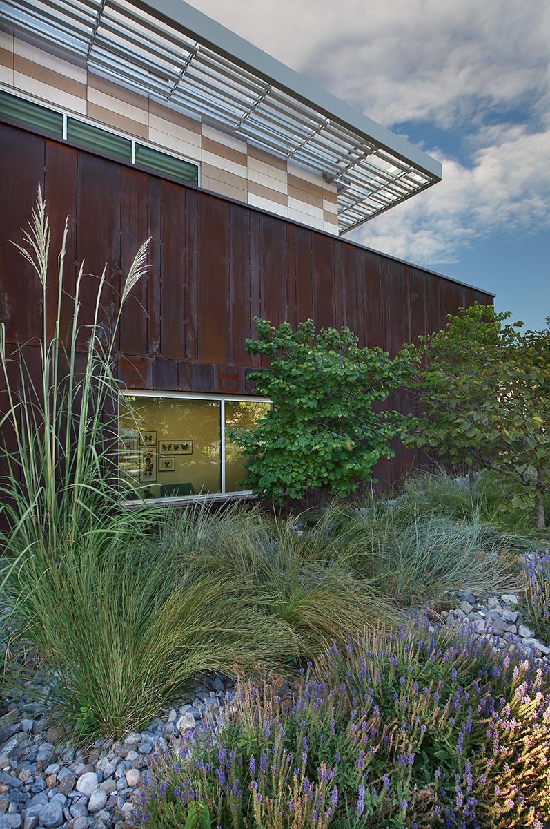 Blalock & Partners Architects • Ascent Construction