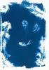 5x7 Cyanotype