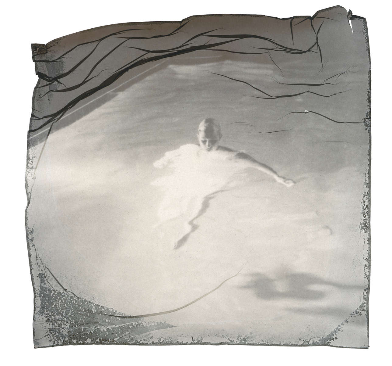 SX-70 Black and White filmEmulsion Lift onto Yupo Semi-Transparent Watercolor Paper