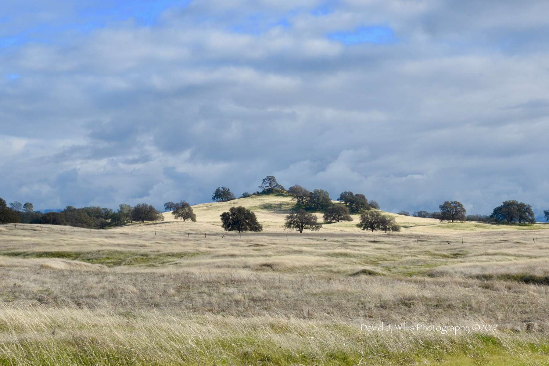 Spring, Butte County