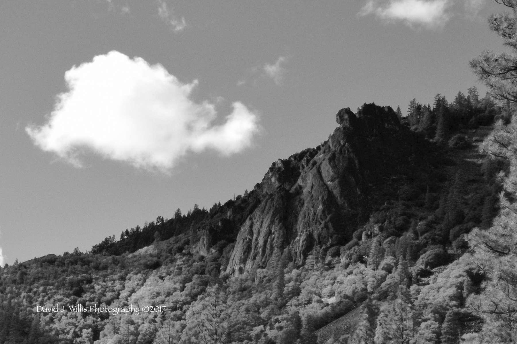 Cougar Rock II, Genessee Valley, Plumas County