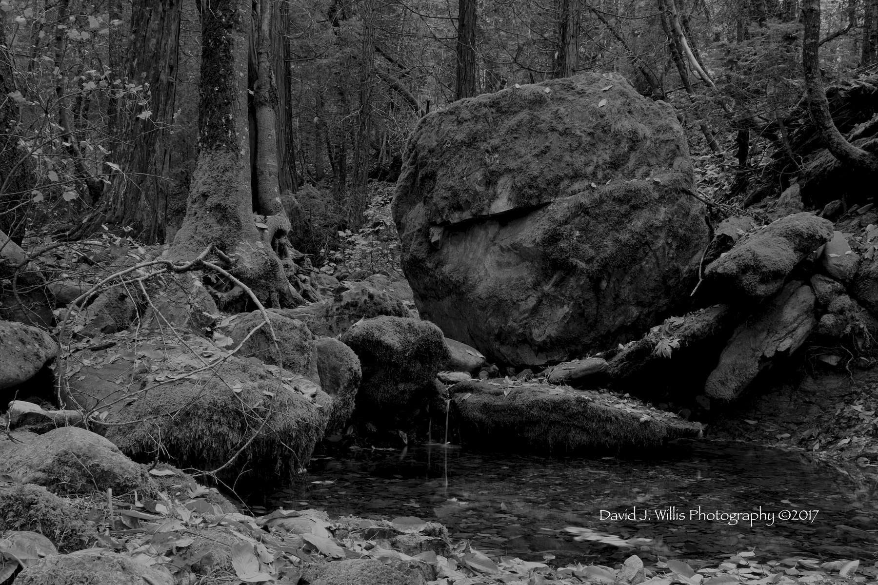Dream Catcher, Big Boulder, Undisclosed Location, Fall, Plumas County