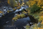 Fall Color, Keddie Cascades, Spanish Creek, Plumas County