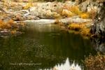 Indian Creek, Fall, Plumas County