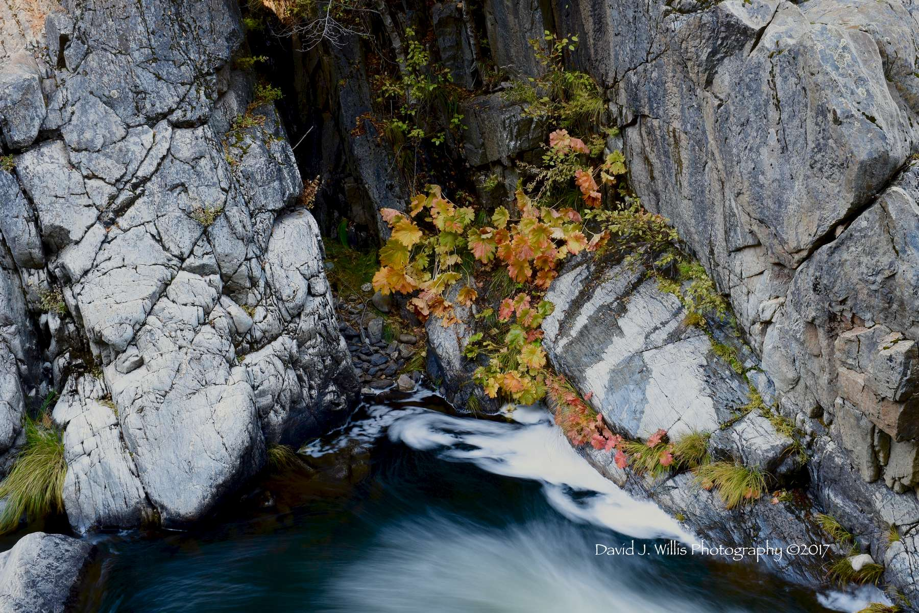 Rocks and Rhubarb at Keddie Cascades II, Fall, Plumas County