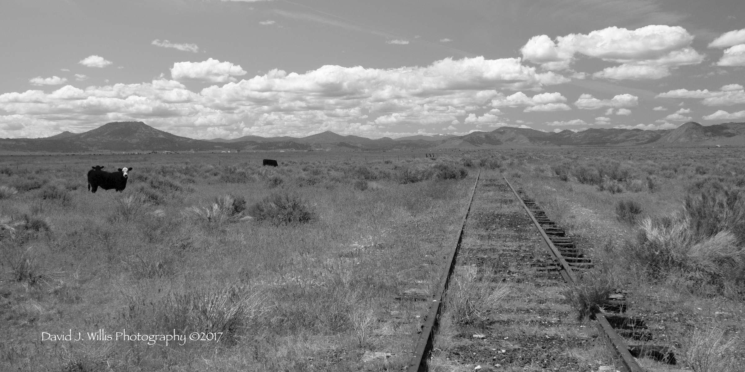 Sierra Valley, Train Tracks, Plumas County