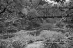Tresspasser's Delight II, Undisclosed Location, Fall, Plumas County
