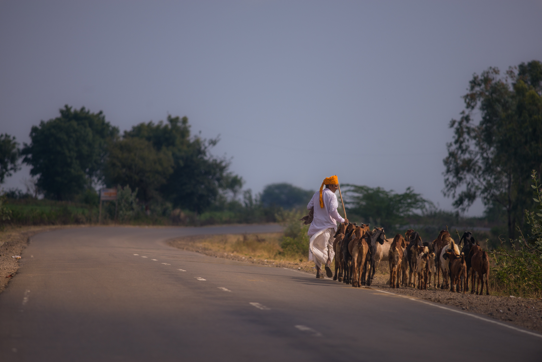 20150119-Madhya-Pradesh-133