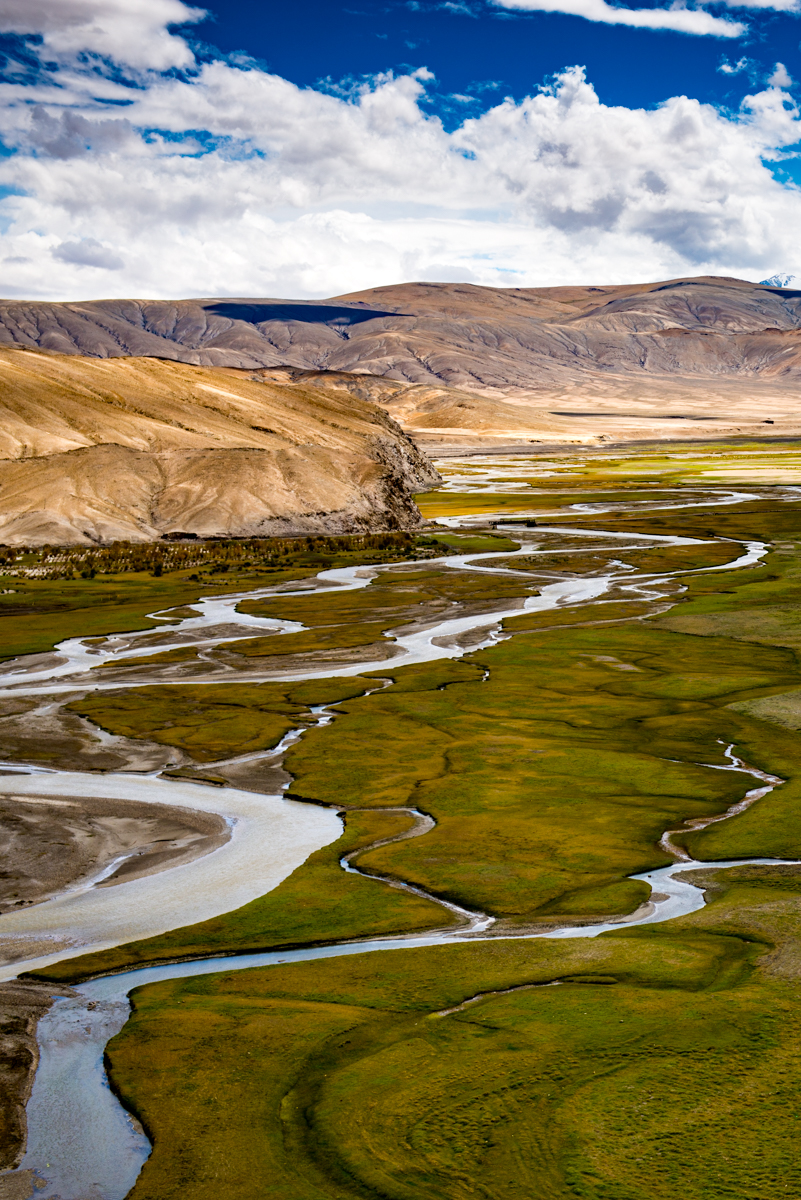 Braided Stream, Tibetan Plateau, Southern Ladakh