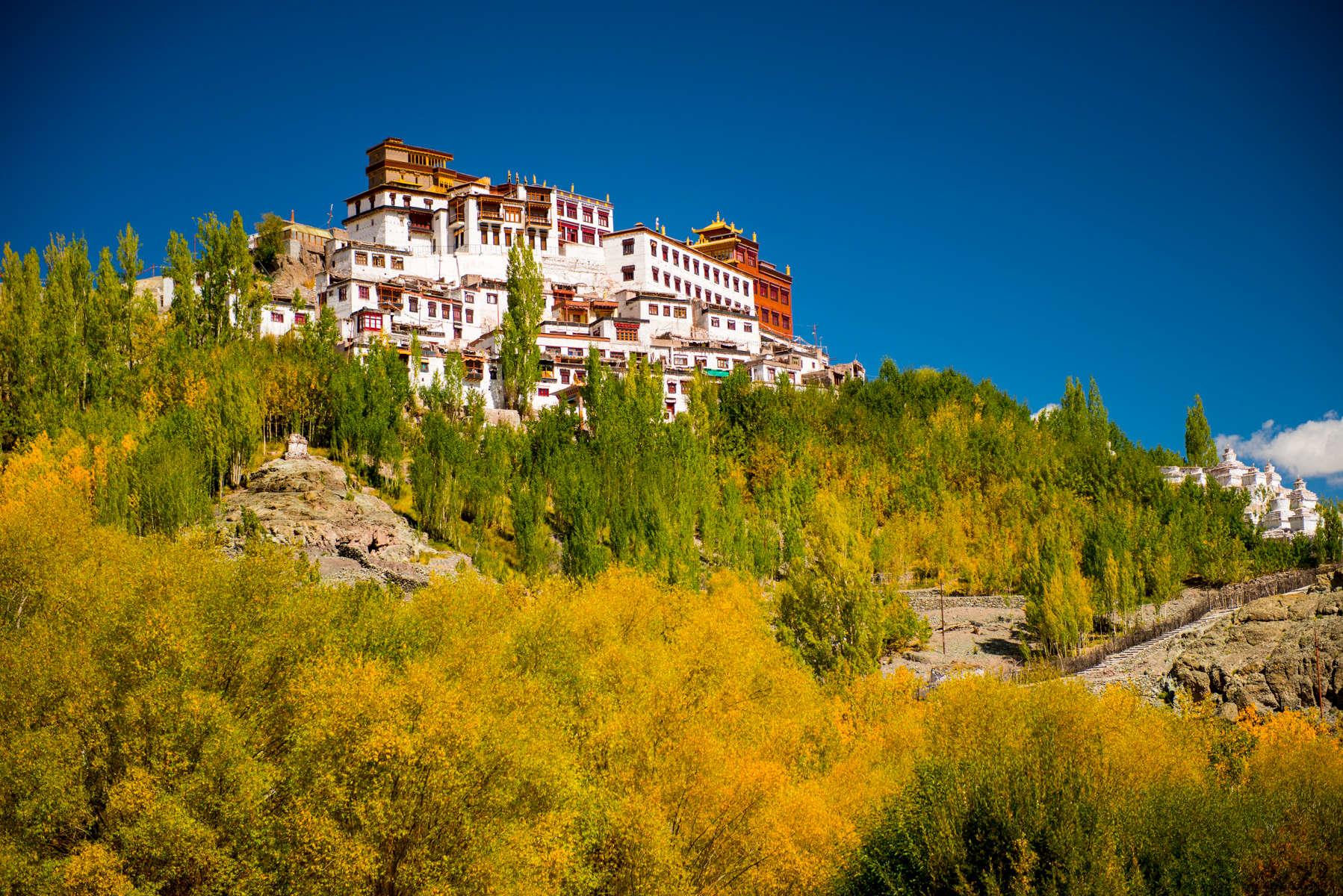 20160926-Ladakh-Autumn16-2388