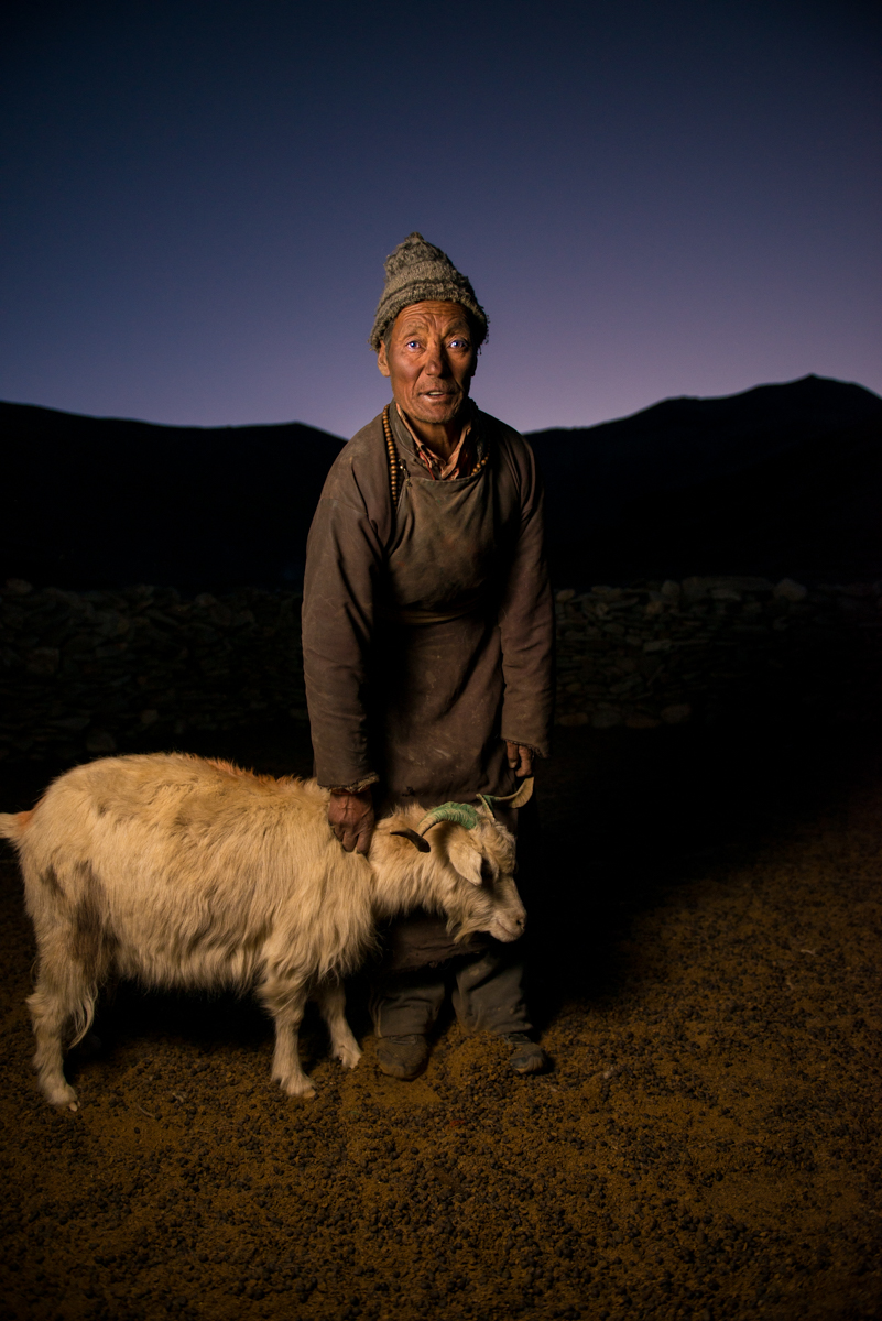 Man and goat, Changthang