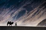 20170418-ladakh-april-4432