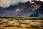 Photo-Essay---Nubra-3