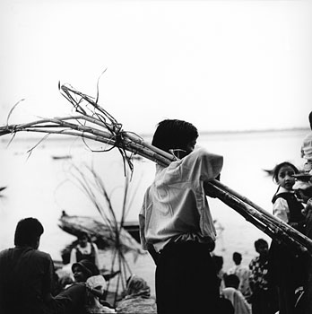 A young Hindu boy carries a bundle of sugar cane that will be used as an offering on the banks of the Ganges River.Varanasi, India 1997