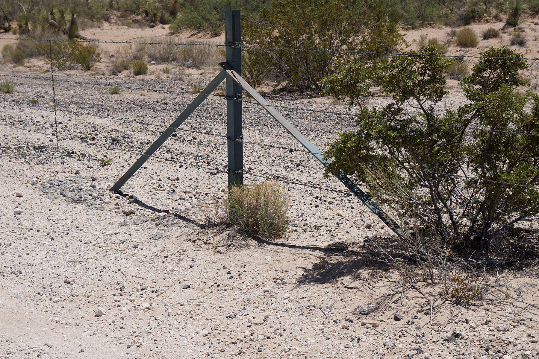 Fence cordoning off property along Hwy 9 near the border of New Mexico/Mexico.