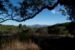 NapaValley_Web_10