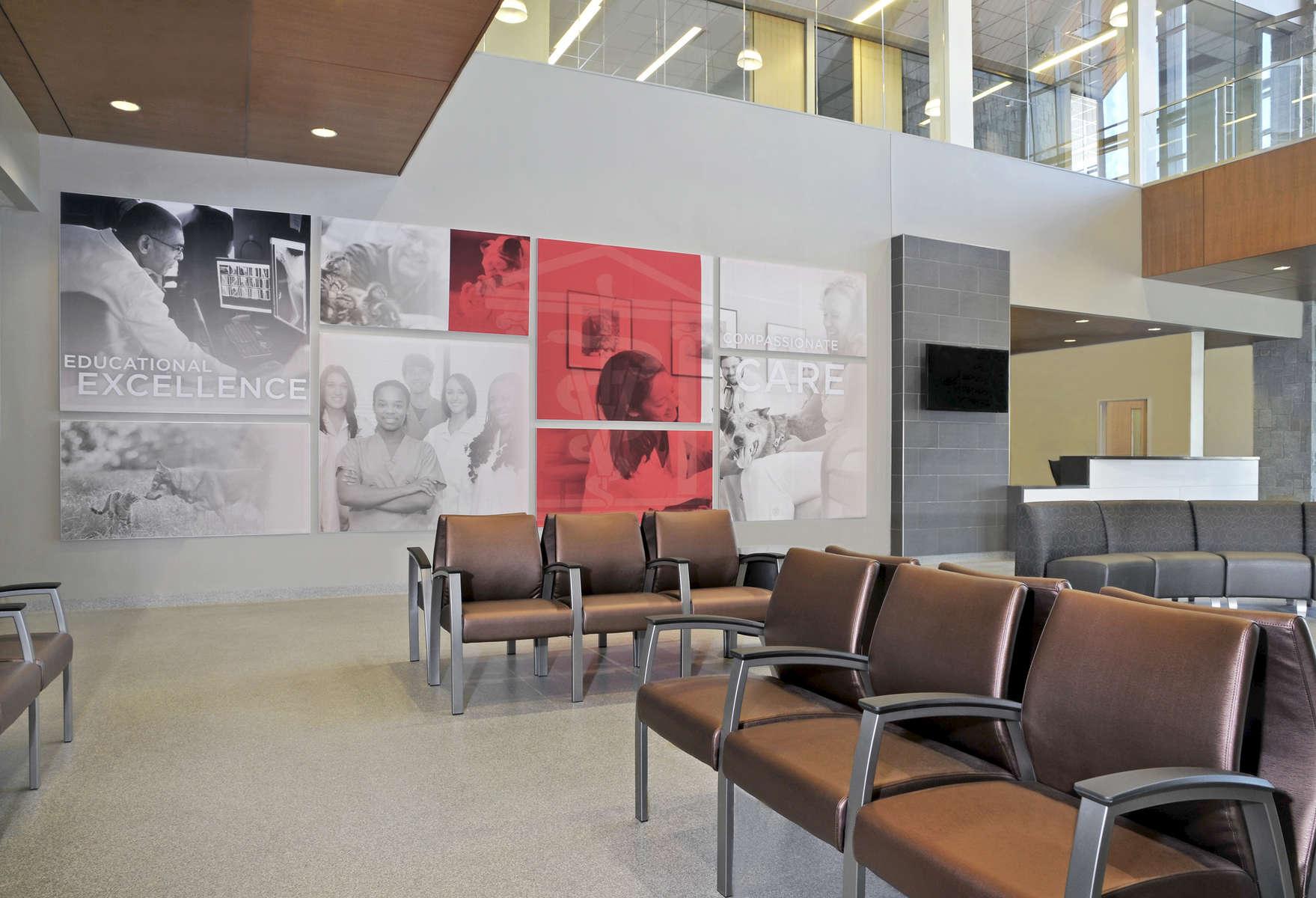UGA Vet HospitalAthens GAMarch 2015
